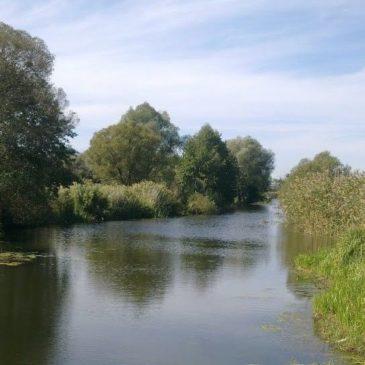 Вплив водосховищ та водойм на якість поверхневих вод річок