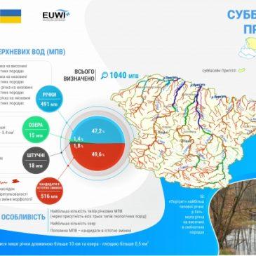 Про визначення головних водно-екологічних проблем суббасейну річки Прип'ять