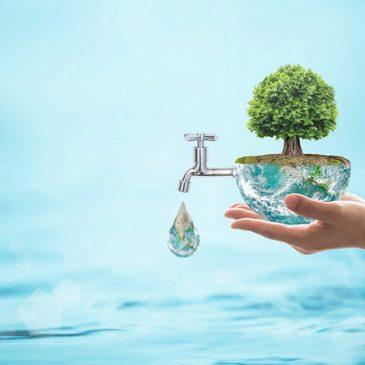 Значення води в природі та житті людини